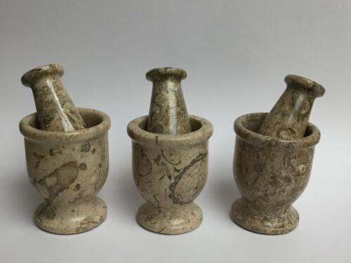 Mortar And Coral Fossil Herb Pepper Mortar &
